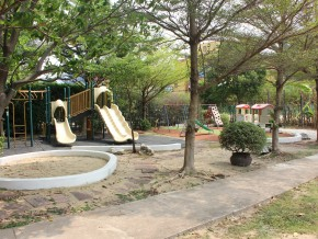 Childrens playground and garden