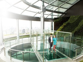 Skywalk glass bridge